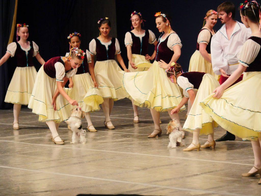 Ballet Under the Stars 49